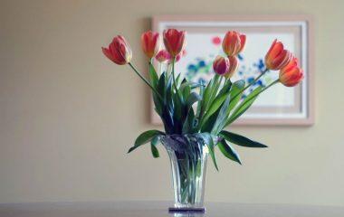 Từng không gian trong ngôi nhà của bạn luôn cần điểm nhấn, chẳng hạn như bộ sofa của phòng khách phải thu hút được sự quan tâm của bạn bè, tủ bếp của phòng bếp phải tạo ra cảm hứng nấu nướng hay bàn ăn của phòng ăn phải tạo ra cảm giác ngon miệng […]