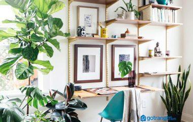 Xin chào bạn, không gian làm việc dù ở văn phòng hay ở nhà thì cũng nên thật thoải mái và có sự cân bằng giữa công việc với thư giãn. Đó là lý do không những nên chọn ban lam viec hien dai kiểu dáng tối giản, nhỏ gọn mà còn nên trồng cây […]