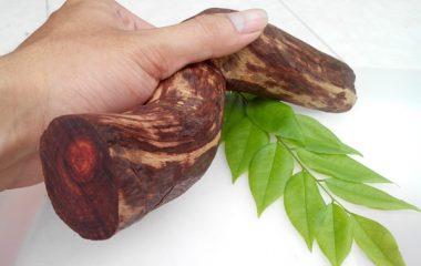 Cây Sưa Đỏ còn được gọi là cây sưa, cây sưa đỏ, cây huỳnh đàn, cây huỳnh tuyến phố, cây trắc thối, huê mộc vàng … và một số tên gọi khác theo từng địa phương. Gỗ sưa thuộc nhóm họ Đậu đang nghiêm cấm khai thác tại Việt Nam. Vậy cách nhận biết gỗ […]
