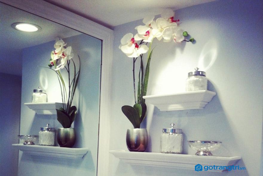 2 lưu ý khi lựa chọn kệ trang trí nhà tắm